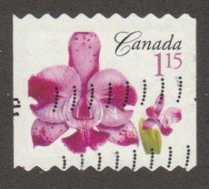 2246  Flower Definitive - coil