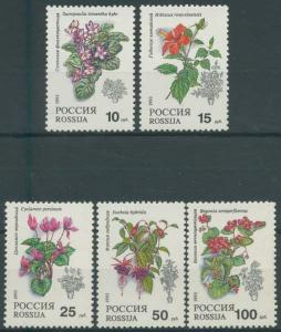 Russia MNH 6133-7 Flowers Flora 1993