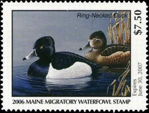 MAINE #23 2006 STATE DUCK STAMP RING NECKED DUCK  by Jeannine Staples