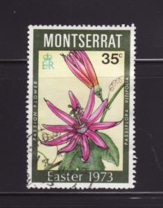 Montserrat 289 U Flowers