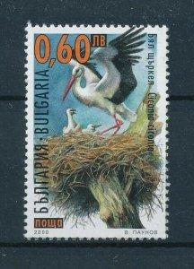 [102916] Bulgaria 2000 Birds vögel oiseaux From sheet MNH