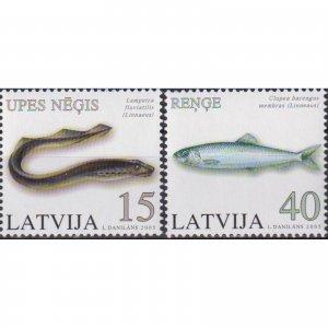 Latvia 2005 Fish  (MNH)  - Fish