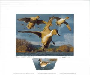 CALIFORNIA #27 1997 STATE DUCK PRINT Robert Steiner, Color Remarque #75/400