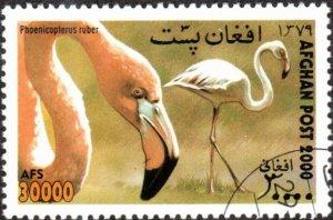 Afghanistan sw1980 - Cto - 30,000af Carribean Flamingos (2000)