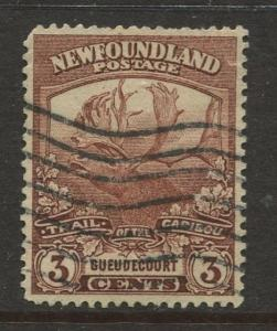 Newfoundland - Scott 117 - Caribou Issue - 1919 - Used - Single 3c Stamp
