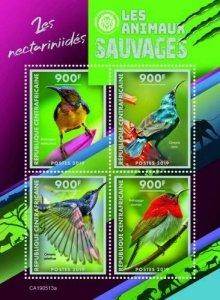 Z08 IMPERF CA190513a CENTRAL AFRICA 2019 Sunbirds MNH ** Postfrisch