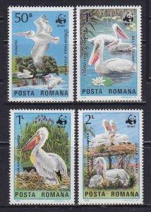 Romania 3232-5 Pelicans Wildlife WWF 1984