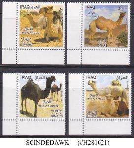 IRAQ - 2013 THE CAMELS - ANIMALS - 4V - MINT NH