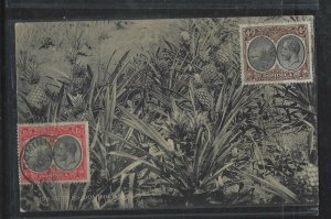 DOMINICA COVER (P2304B)  1927 KGV 1 1/D+4D ON UNSENT PPC