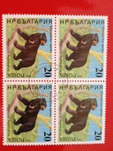 Bulgaria 1988 Block Animal Bear Helarctos Malayanus Mammal Stamps Mi 3706 CTO