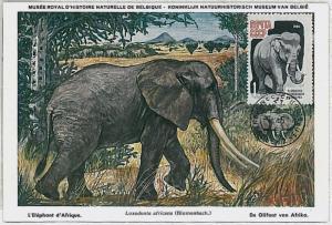 32225 MAXIMUM CARD - POSTAL HISTORY - Russia USSR: Elephants, Wild Animals, 1965