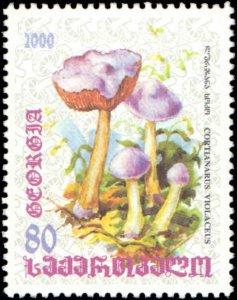 Georgia #252-256, Complete Set(5), 2000, Mushrooms, Never Hinged
