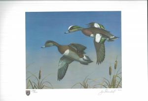 ILLINOIS #7 1981 STATE DUCK STAMP PRINT WIDGEON/GREEN WINGED TEAL by Jim Trandel