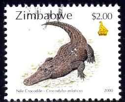 Reptile, Nile Crocodile, Zimbabwe stamp SC#843 used