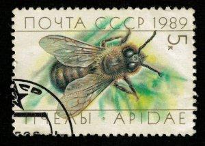 Honeybee 5Kop (TS-2120)