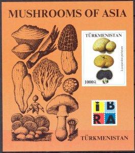 Turkmenistan IBRA Mushrooms S/S MNH Cinderella !