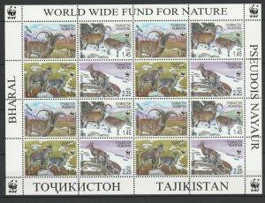 Tajikistan 2005 WWF Fauna Goats MNH sheet