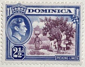 AlexStamps DOMINICA #101 VF Mint