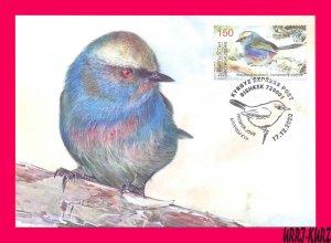 KYRGYZSTAN 2020 Nature Fauna Bird of Year White-Browed Tit-Warbler Maxicard Card