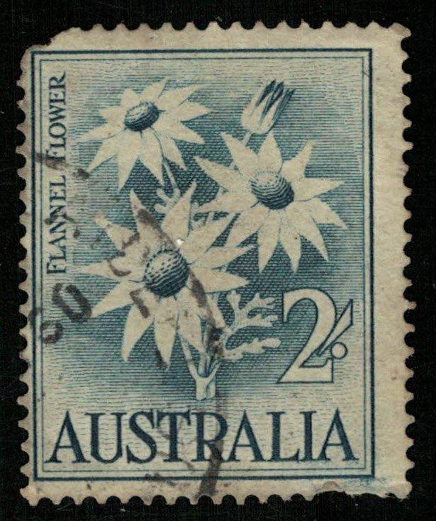Flower (T-7241)