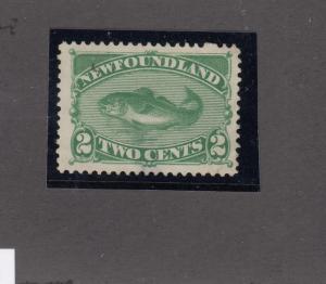 NEWFOUNDLAND # 47 VF-MNG 2cts CODFISH(Thin spot) CAT VALUE $120