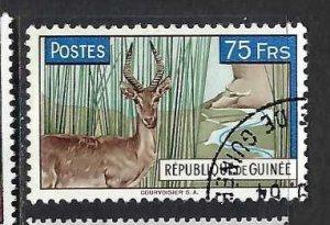 GUINEA 219 VFU FAUNA Z155