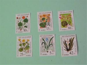 Bulgaria - 3300-05, MNH Set. Marine Flowers. SCV- $2.00