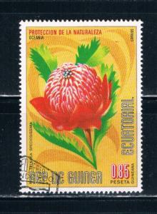 Equatorial Guinea Used Flower Telopea Speciosissima (E0034)+
