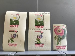 Scotland Eynhallow Holy Island Nymphea Pygmea  plant flower MNH stamps R24007