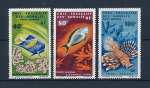 [47112] French Somali Coast Djibouti 1966 Marine Life Fish Airmail MNH