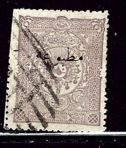 Turkey P34 Used 1893 issue  trimmed perfs    (ap3033)