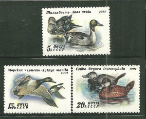 Russia MNH 6009-11 Ducks