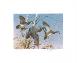 VERMONT #1 1986 STATE DUCK STAMP PRINT WOOD DUCKS MED ED Jim Killen 2 stamps