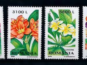 [79812] Romania 2000 Flora Plants Flowers  MNH