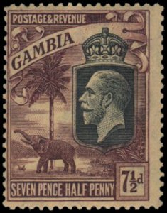 Gambia 111 mh