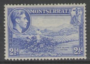 MONTSERRAT SG105 1938 2½d ULTRAMARINE p13 MTD MINT