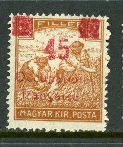 Hungary 1919 French Occupation 45f/2f Sc #1N18 Mint M902 ⭐⭐