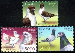 2011    Belarus    880-82    Pigeons ( Post pigeon)     6,50 €
