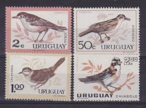 URUGUAY Sc#695/8 MNH STAMP Native birds Rofous bellied Thrush  CV$7.5