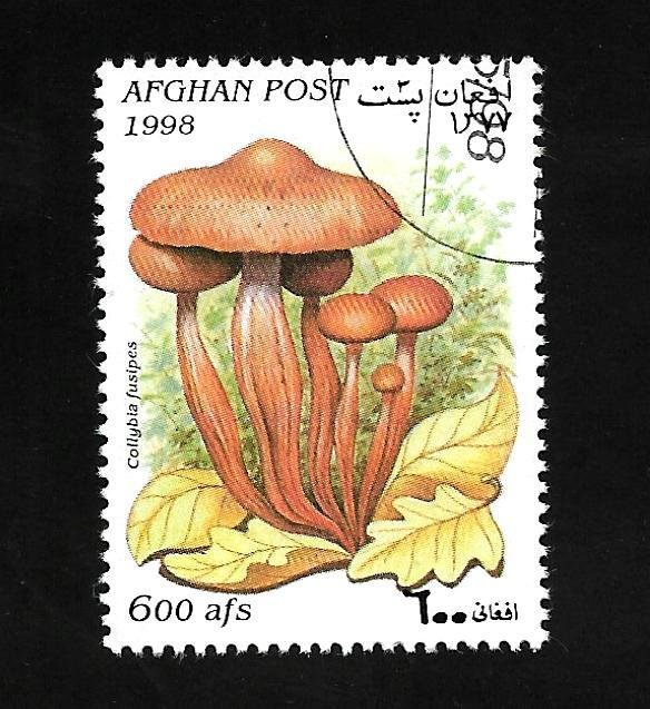 Afghanistan 1998 - U - Unlisted - Pic 2 *