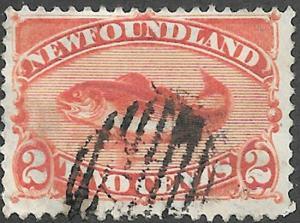 Newfoundland Scott Number 48 VF Used