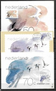 NETHERLANDS STAMPS, 1982, SET OF 3 MAXI CARDS MC MAXIMUM CARDS DUCKS