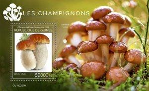 GUINEA - 2019 - Mushrooms - Perf Souv Sheet - M N H