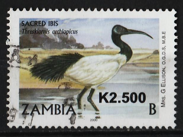 Zambia 1999/2001 Birds 2500k (1/20) USED