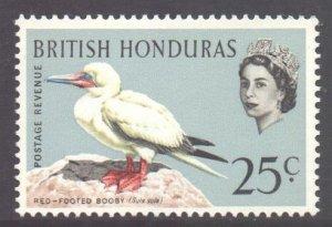 Br Honduras Scott 174 - SG209, 1962 Birds 25c MNH**