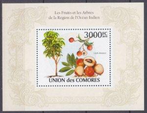 2009 Comoro Islands 2666/B568 Fruit 15,00 €