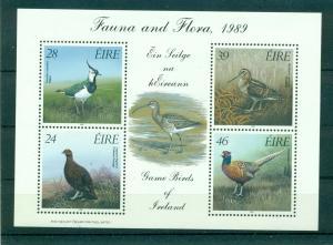 Ireland - Sc# 758a. 1989 Birds MNH Souv. Sheet. $8.00.