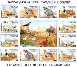 Tajikistan 1996 Birds Shlt (12 +L)  MNH VF  Sc # 84-89