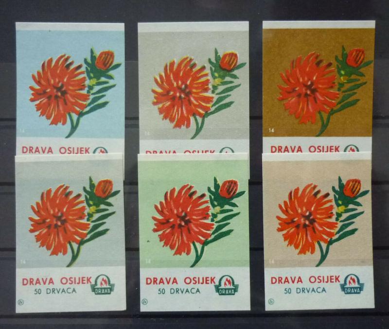 Match Box Labels! flora flower flowers nature osijek croatia yugoslavia GJ43