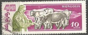 MONGOLIA, 1961, CTO 10m, Oxen Scott 244